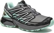 Salomon Wings Flyte GTX W