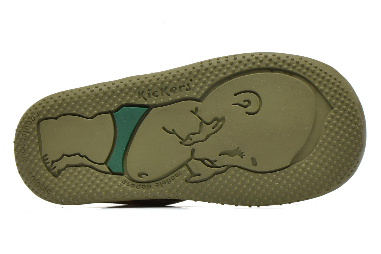 Boots en enkellaarsjes Kickers Bonbon Groen boven