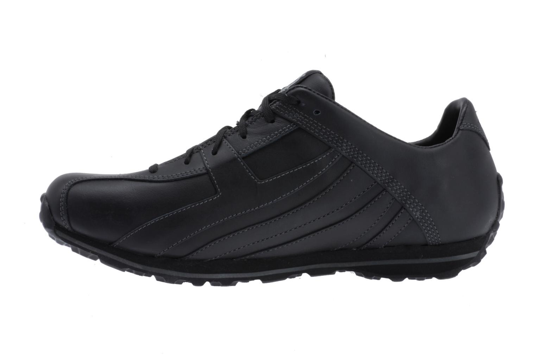Sneaker Timberland Fells Trainer schwarz ansicht von vorne