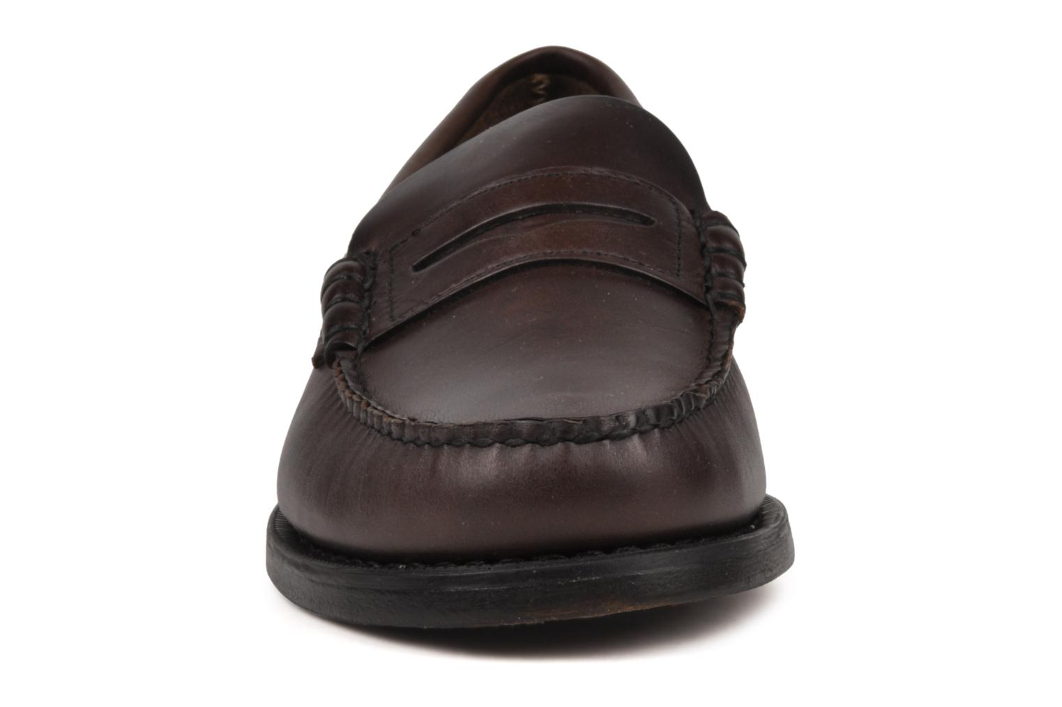 Loafers Sebago Classic Brown model view