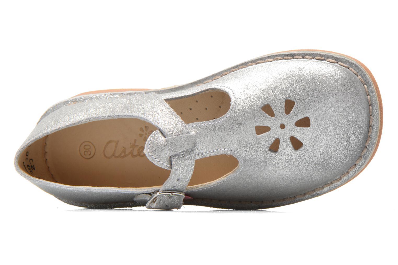 Ballerinas Aster Dingo silber ansicht von links
