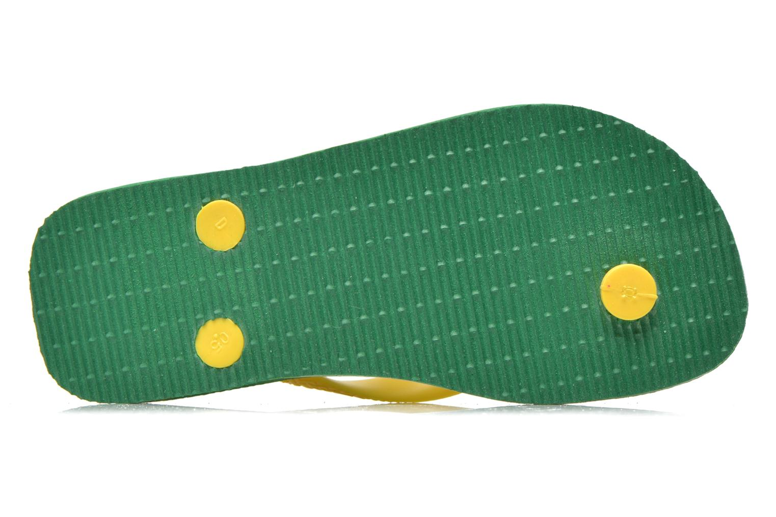 Flip flops Havaianas Brasil Logo E Green view from above