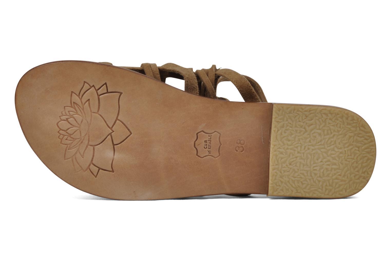 Sandales et nu-pieds Tatoosh Ava Beige vue haut