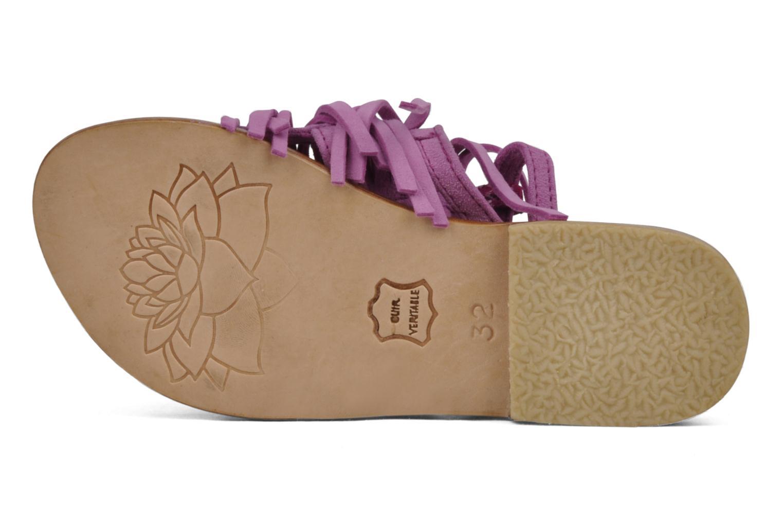 Sandali e scarpe aperte Tatoosh Ava Kids Rosa immagine dall'alto