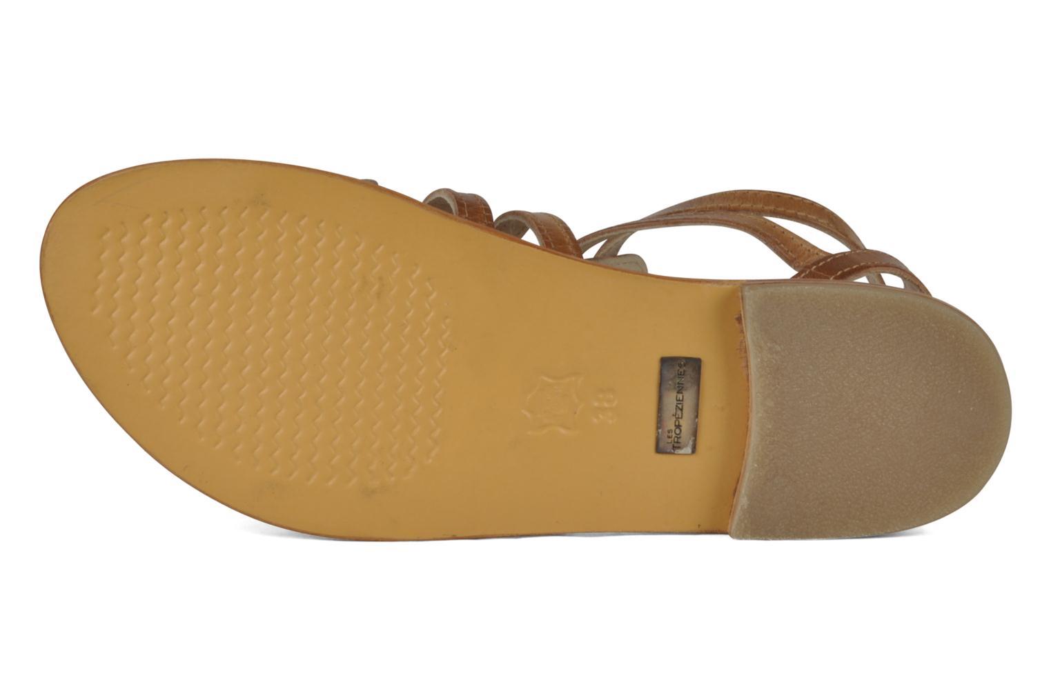 Sandali e scarpe aperte Les Tropéziennes par M Belarbi Hicare Beige immagine dall'alto