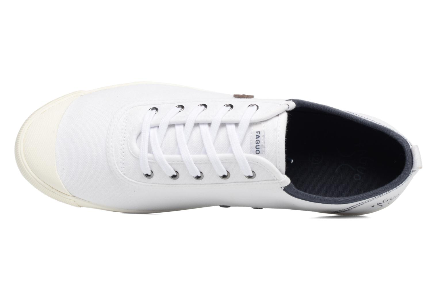 Oak m White/navy