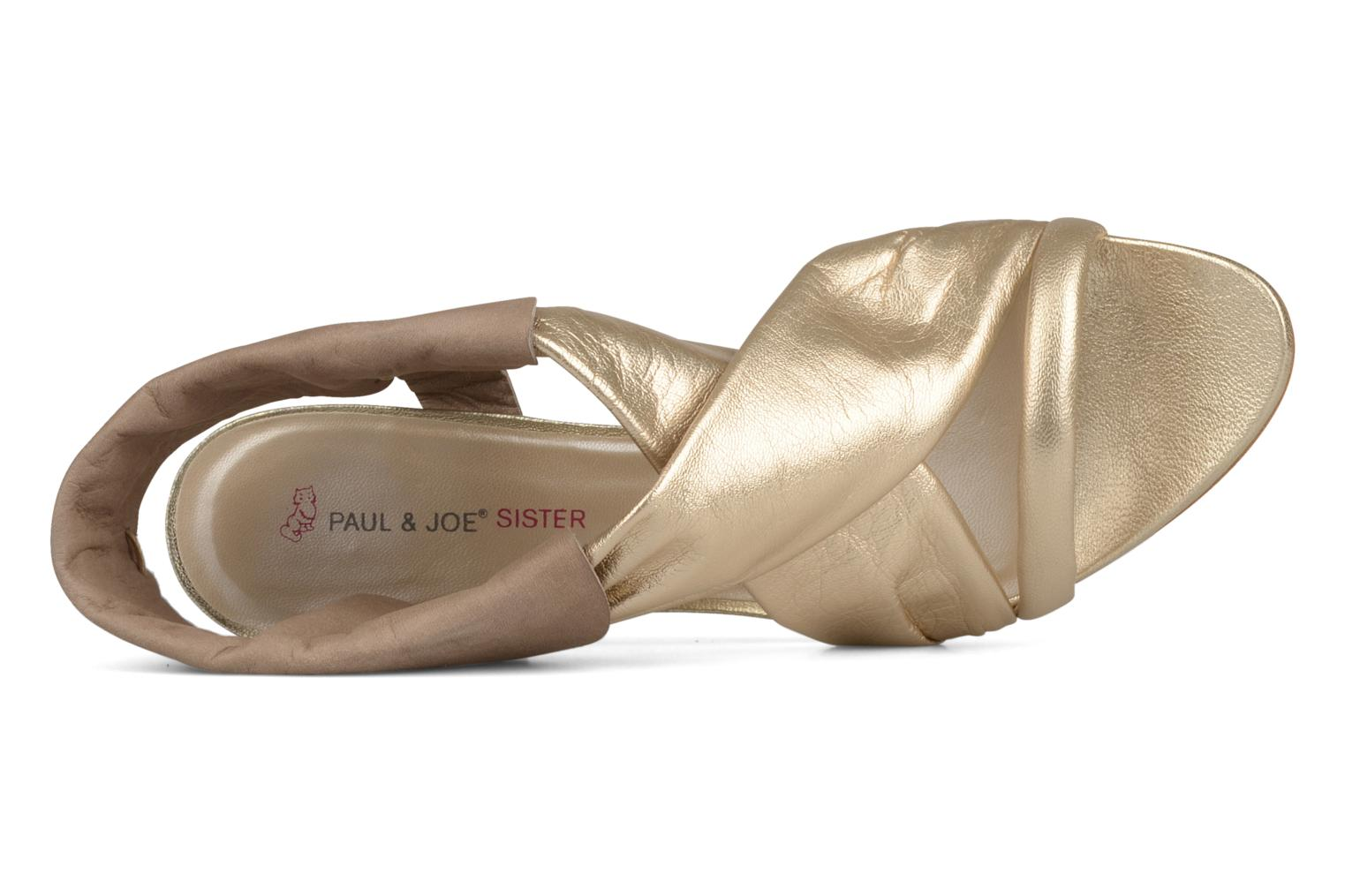 Dolly Sable gold 113