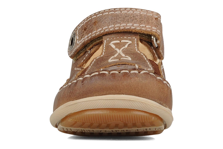 Baskets Primigi Sandro Marron vue portées chaussures