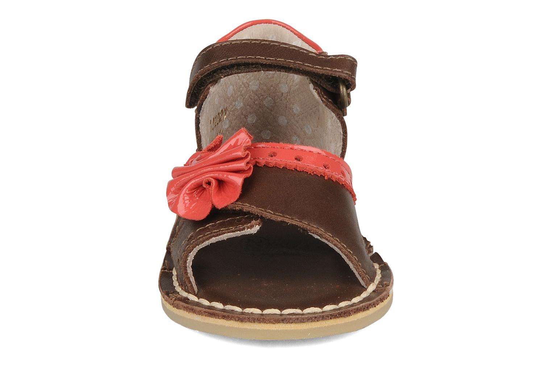 Sandales et nu-pieds Kickers Colombe B Marron vue portées chaussures