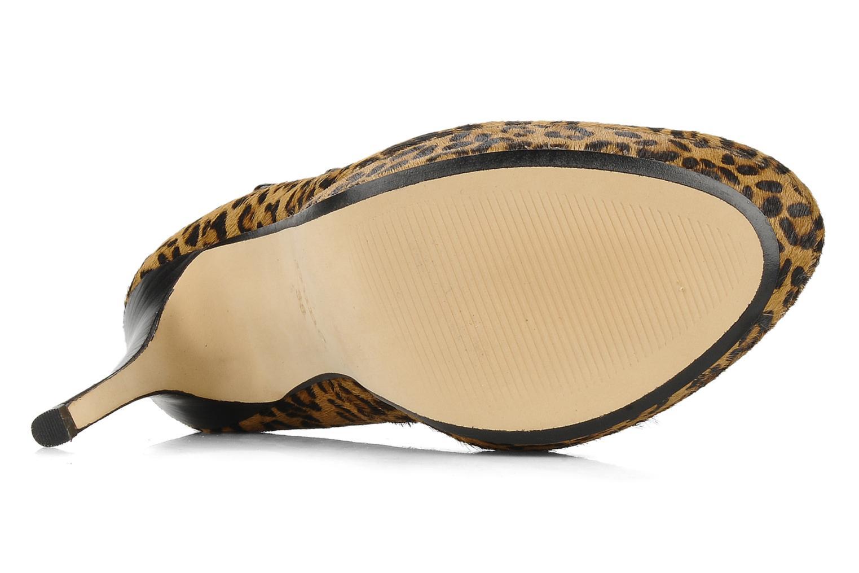 Held Leopard comb
