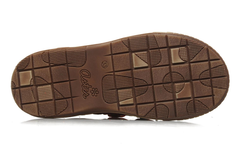 Sneakers Aster HENOCK Rood boven