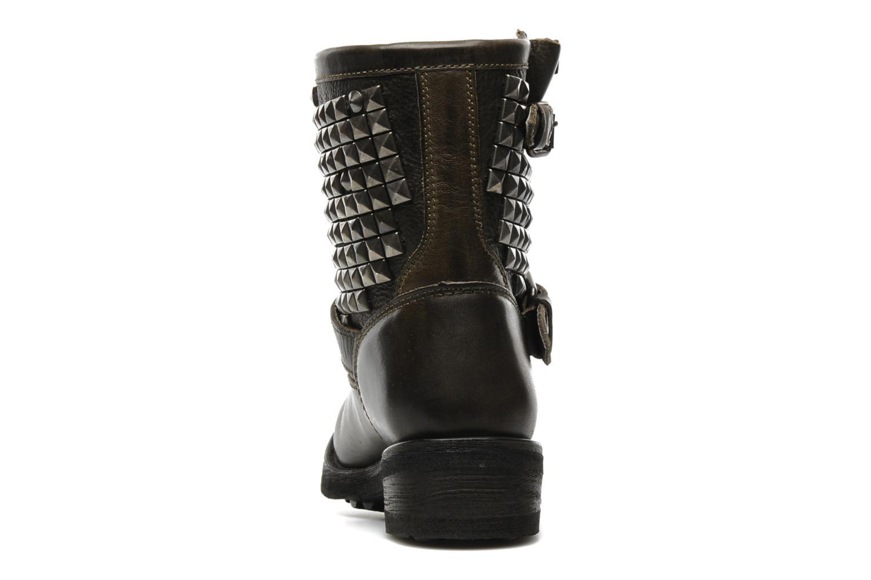 Bottines et boots Ash Titan Gris vue droite