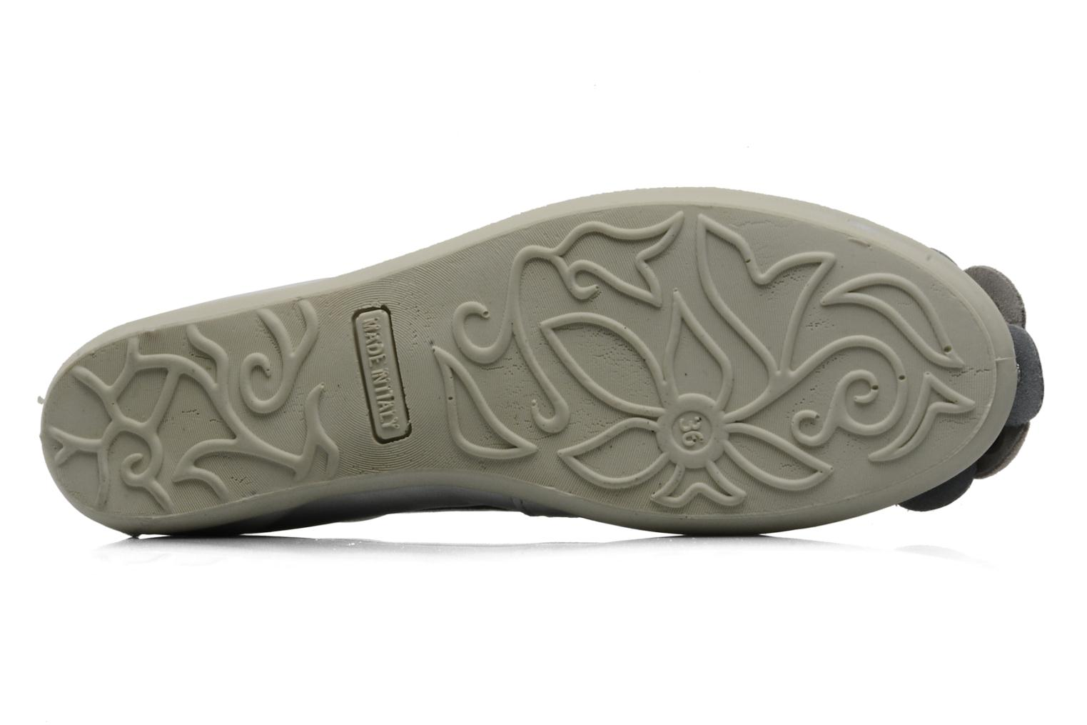 Ballet pumps Rose & Martin HARMONY Grey view from above
