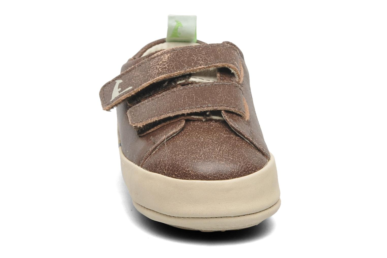 Sneakers Tip Toey Joey New Flashy Bruin model
