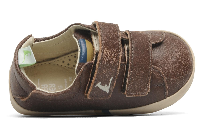 Sneakers Tip Toey Joey New Flashy Bruin links