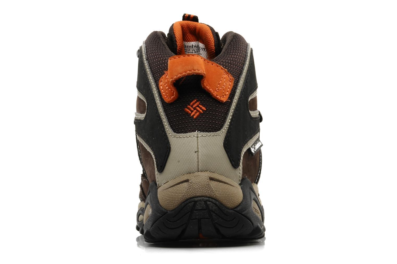 Chaussures de sport Columbia Pole creek omni-tech Marron vue droite