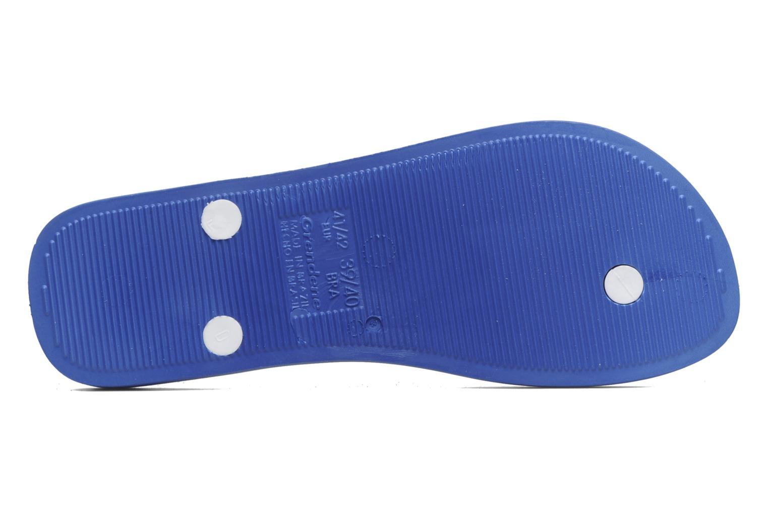Flip flops Ipanema Classic Brasil II M Blue view from above