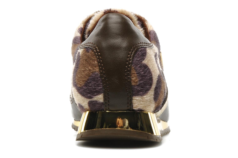 Sonny brwna (leopard)