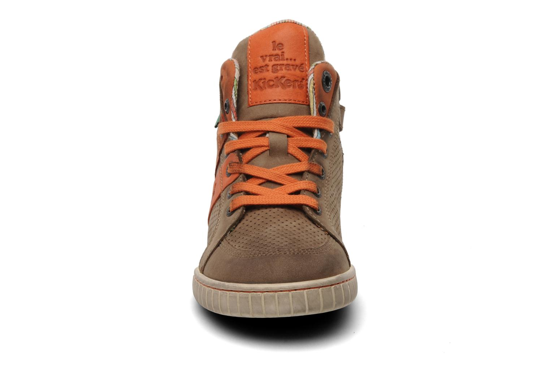 Sneakers Kickers Wincut Bruin model