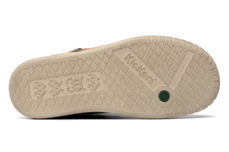 Sneakers Kickers Wincut Bruin boven