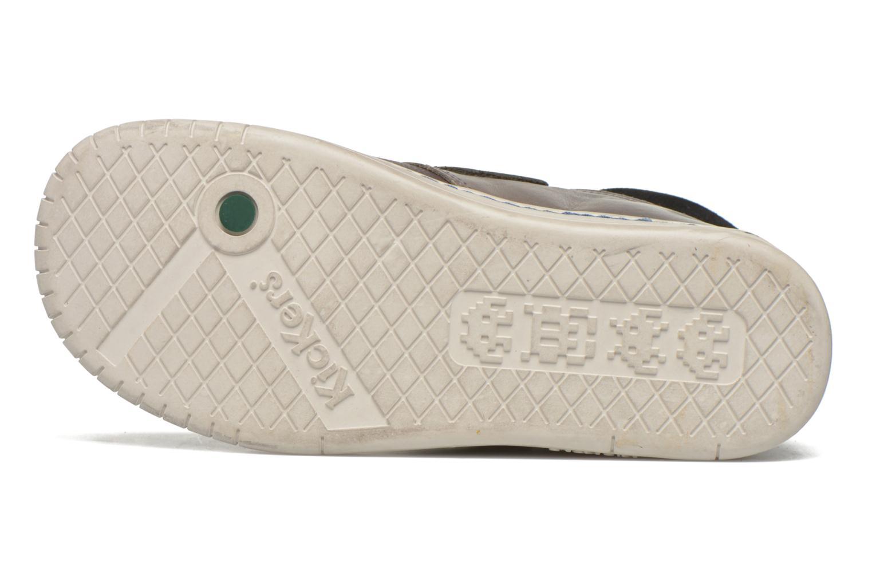 Chaussures à scratch Kickers Winsor Gris vue haut