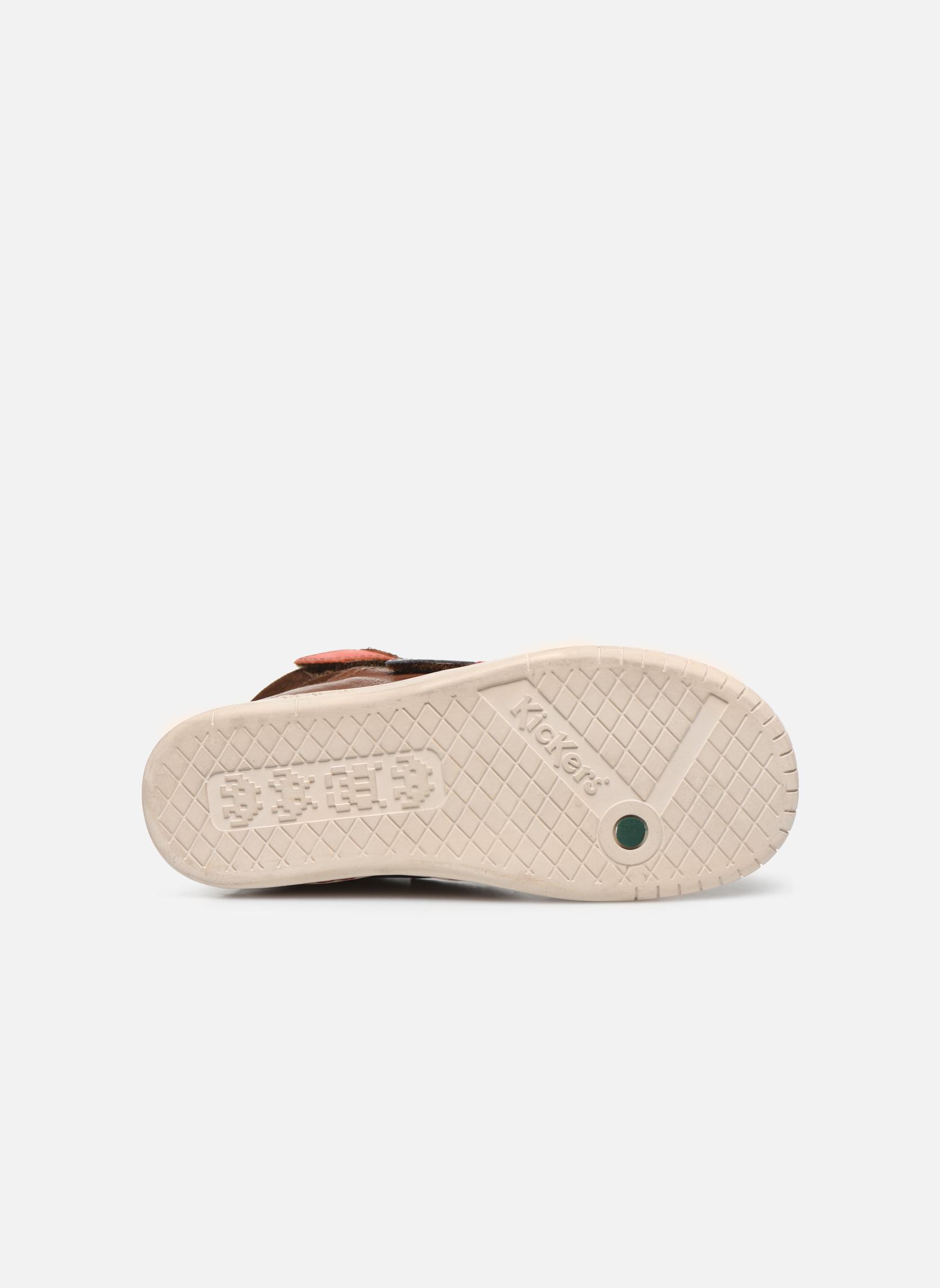 Zapatos con velcro Kickers Winsor Marrón vista de arriba