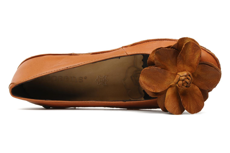 Pardina 640 Softy Henna