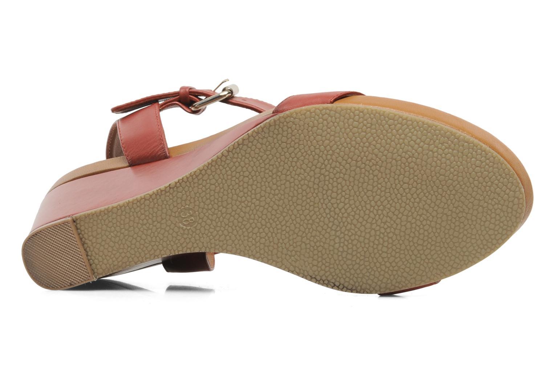 Sandali e scarpe aperte Bruno Premi Noa Rosso immagine dall'alto