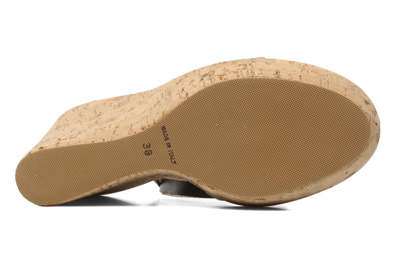 Sandales et nu-pieds U.S Polo Assn. Delicia Orange vue haut