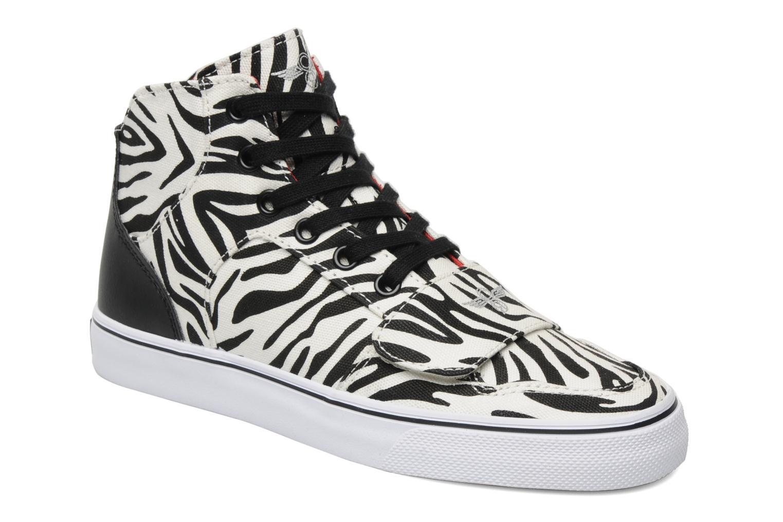 W Cesario XVI zebra