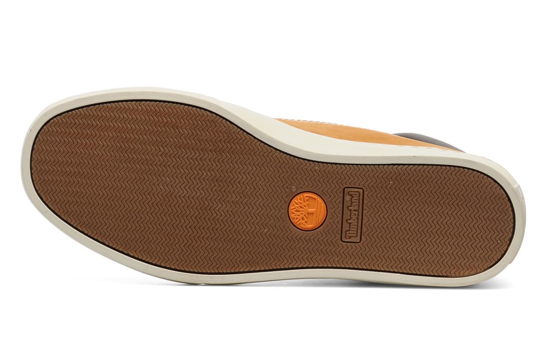Sneaker Timberland 6 In 2.0 Cupsole beige ansicht von oben