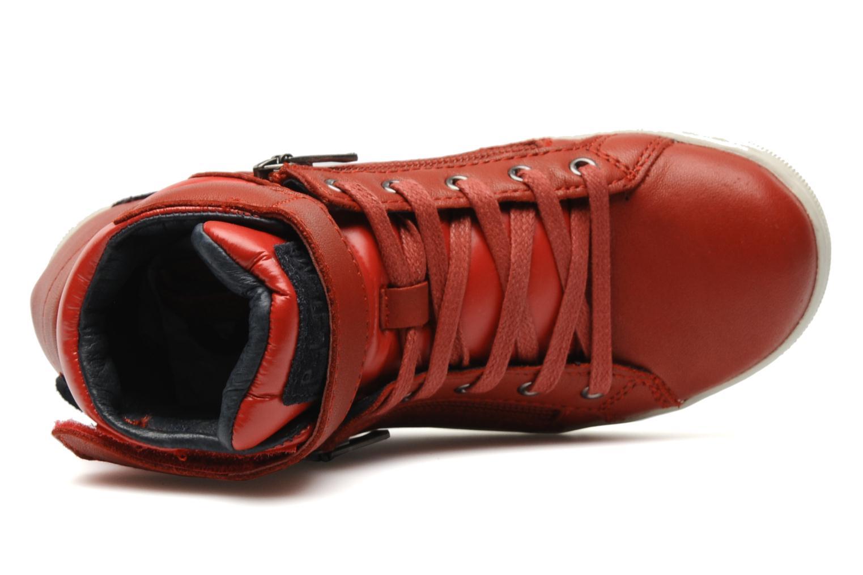 Sneaker P-L-D-M By Palladium Veleda TFL rot ansicht von links