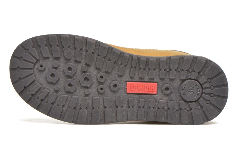 Stiefeletten & Boots Primigi POND 1 braun ansicht von oben