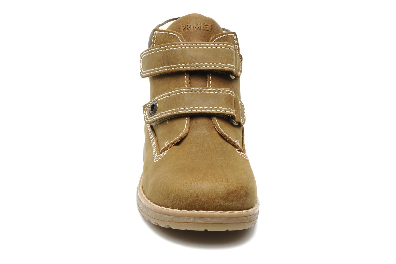 Ankelstøvler Primigi ASPY 1 Brun se skoene på