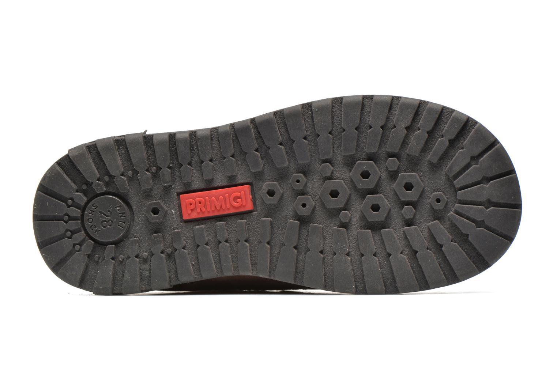 Boots en enkellaarsjes Primigi ASPY 1 Beige boven