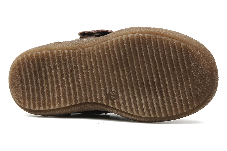 Chaussures à scratch Primigi SKIBBY-E Marron vue haut