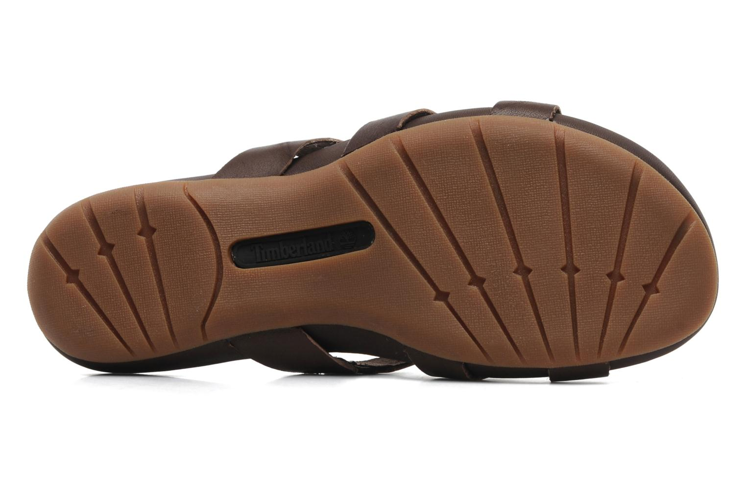 Earthkeepers Pleasant Bay Slide Dark Brown
