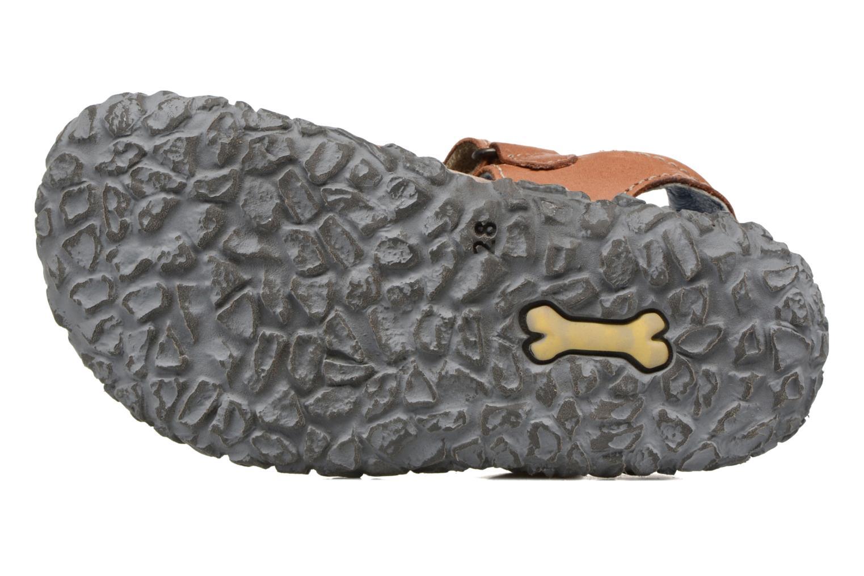 Sandalias Stones and Bones NATAN Marrón vista de arriba
