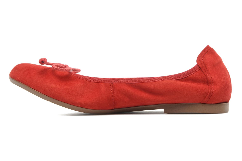 Ballerina's Acebo's Daffodil Rood voorkant