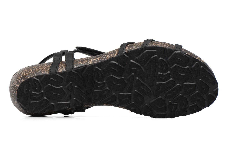Sandali e scarpe aperte Panama Jack Dori Nero immagine dall'alto
