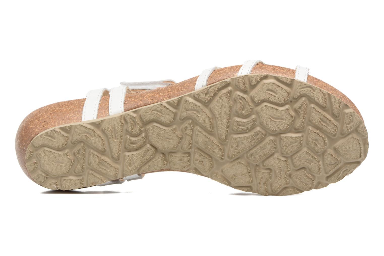 Sandalen Panama Jack Dori weiß ansicht von oben