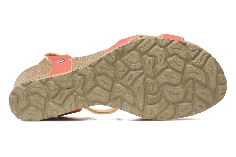 Sandalen Panama Jack Jania Natur Roze boven