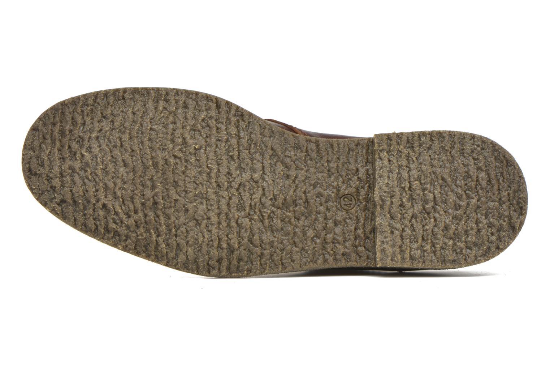 Chaussures à lacets Panama Jack Goodman Marron vue haut