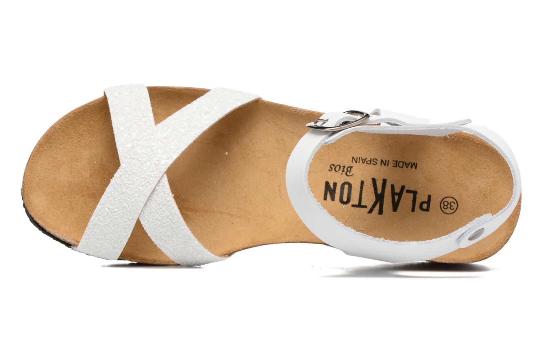 Sandaler Plakton So fine Hvid se fra venstre