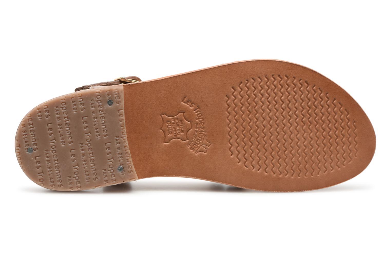 Sandals Les Tropéziennes par M Belarbi Hapax Brown view from above