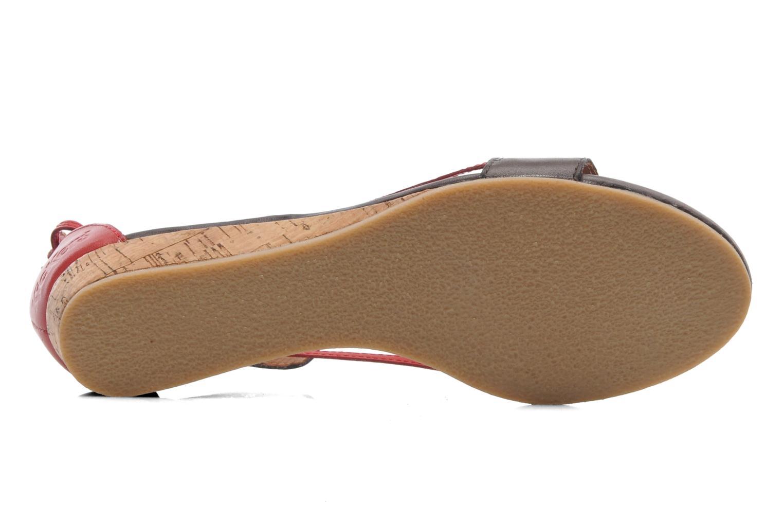Sandalen Kickers Cocola Bruin boven