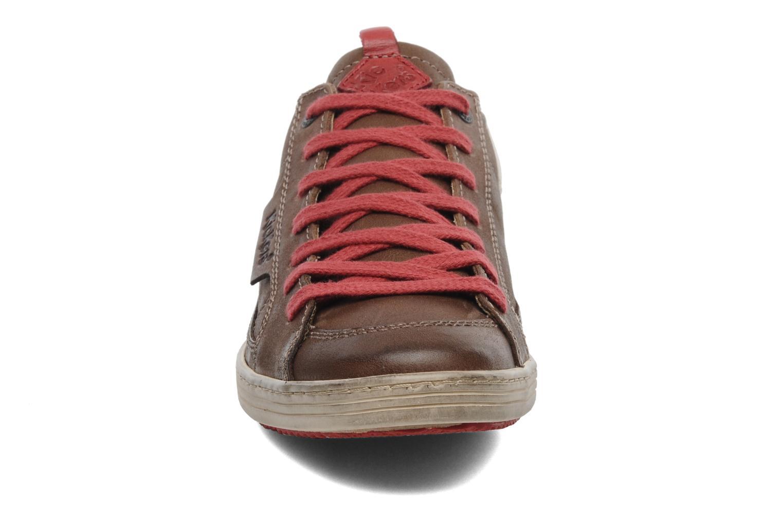 Sneakers Kickers Ambassy Bruin model