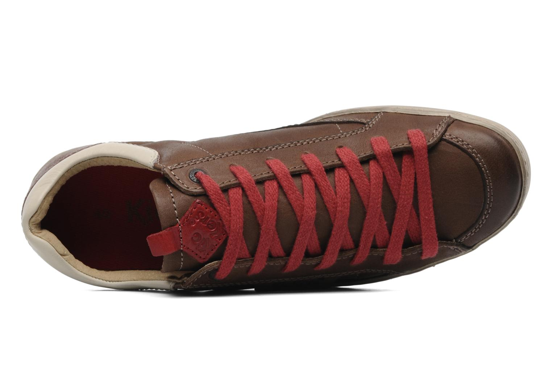 Sneakers Kickers Ambassy Bruin links