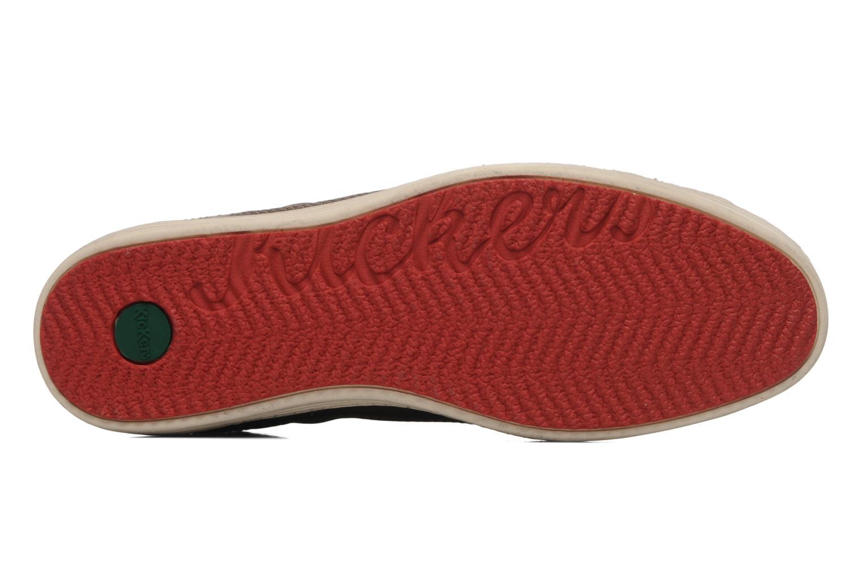 Sneakers Kickers Ambassy Bruin boven