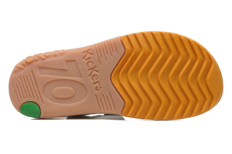 Platino Marron fonce orange